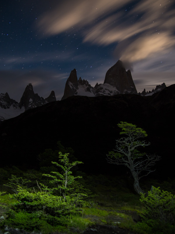 Fitz Roy and tree at night