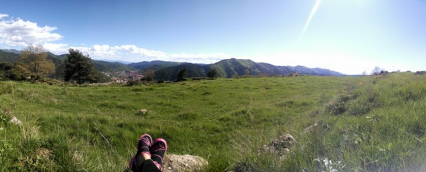 Panorama of Pyrenees greenery