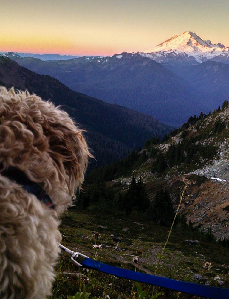 Griffey checking out the sunrise on Mt. Baker
