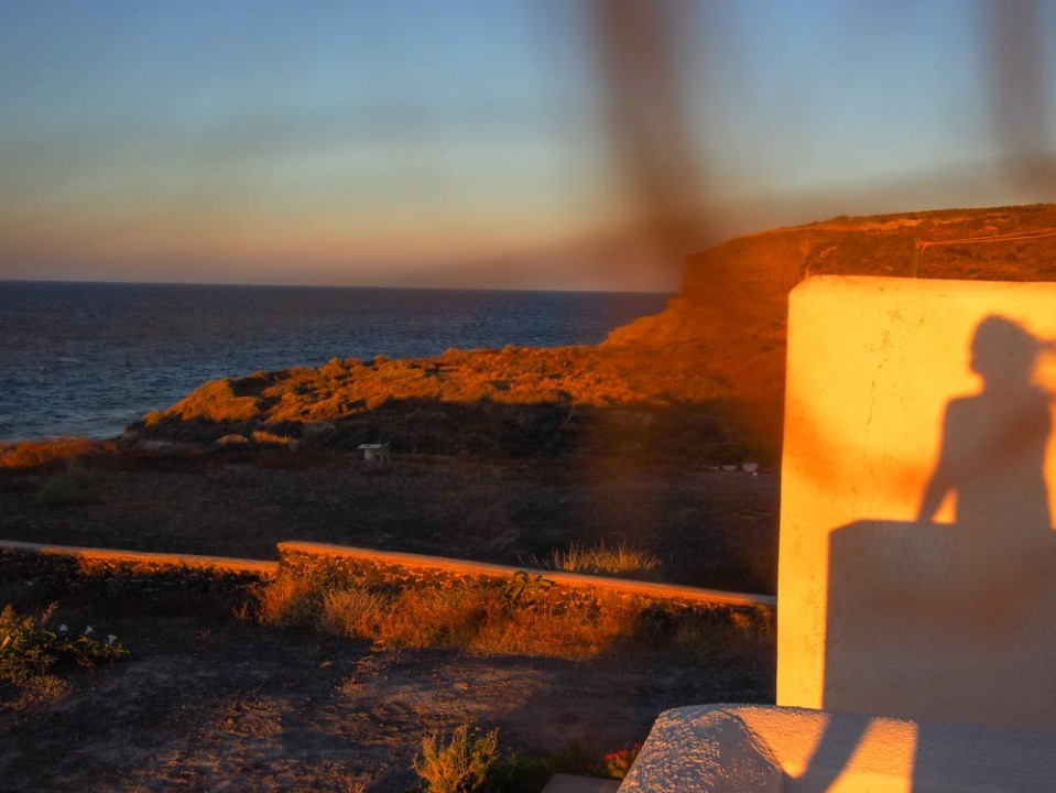 Wind-swept coastal view